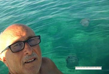 """GASPARE BARRACO: """" Avvistate con il pedalò meduse giganti a 250 metri dalla battigia a Marsala Sud, dicono che non sono aggressive e pericolose, sono meno urticanti delle meduse piccole. Per i bagnanti non vi sono pericoli essendo lontani dalla riva""""."""